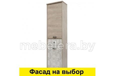 Шкаф Дизель 2D1S/D2 энигма