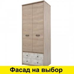Шкаф двухдверный Дизель